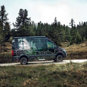 Wald vor lauter Bergen // Vollfolierung